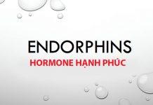 Endorphin là gì